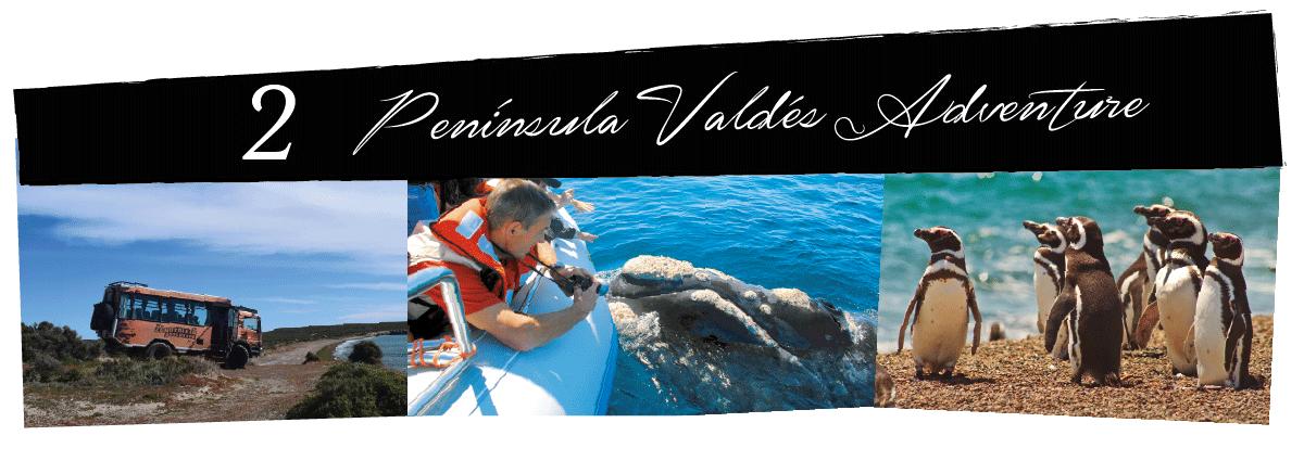 Zonotrikia-Peninsula-Valdes-adventure